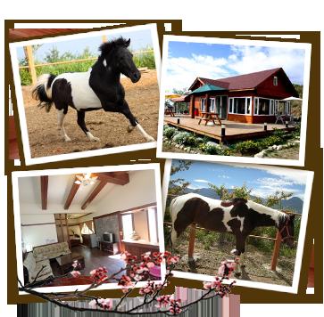 清境依默騎馬渡假莊園