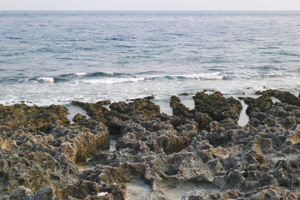 厚石裙礁(觀音石、老鼠石、紅蕃石)