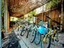 金格提供之免費腳踏車