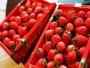 開心草莓園